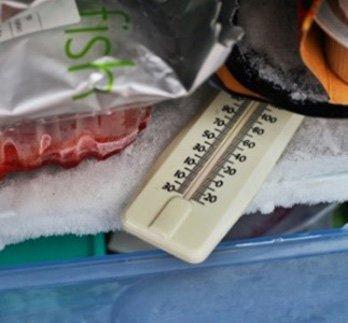 بسته بندی مواد غذایی منجمد
